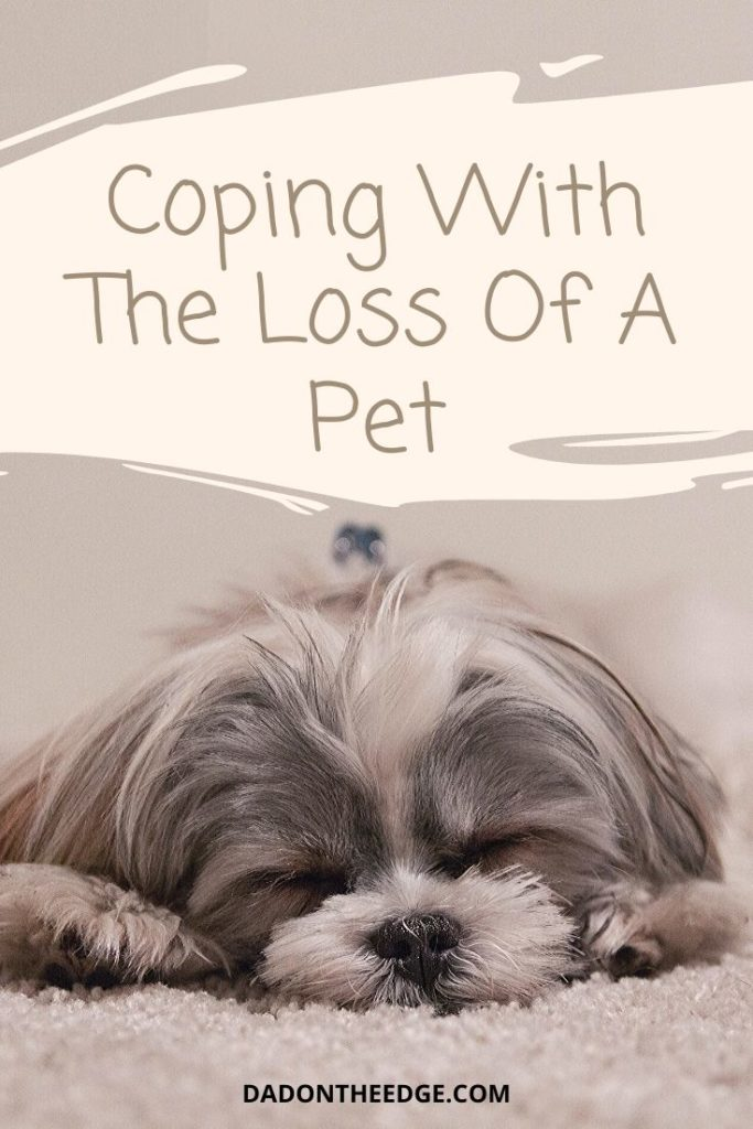 Coping With The Loss Of A Pet PIN