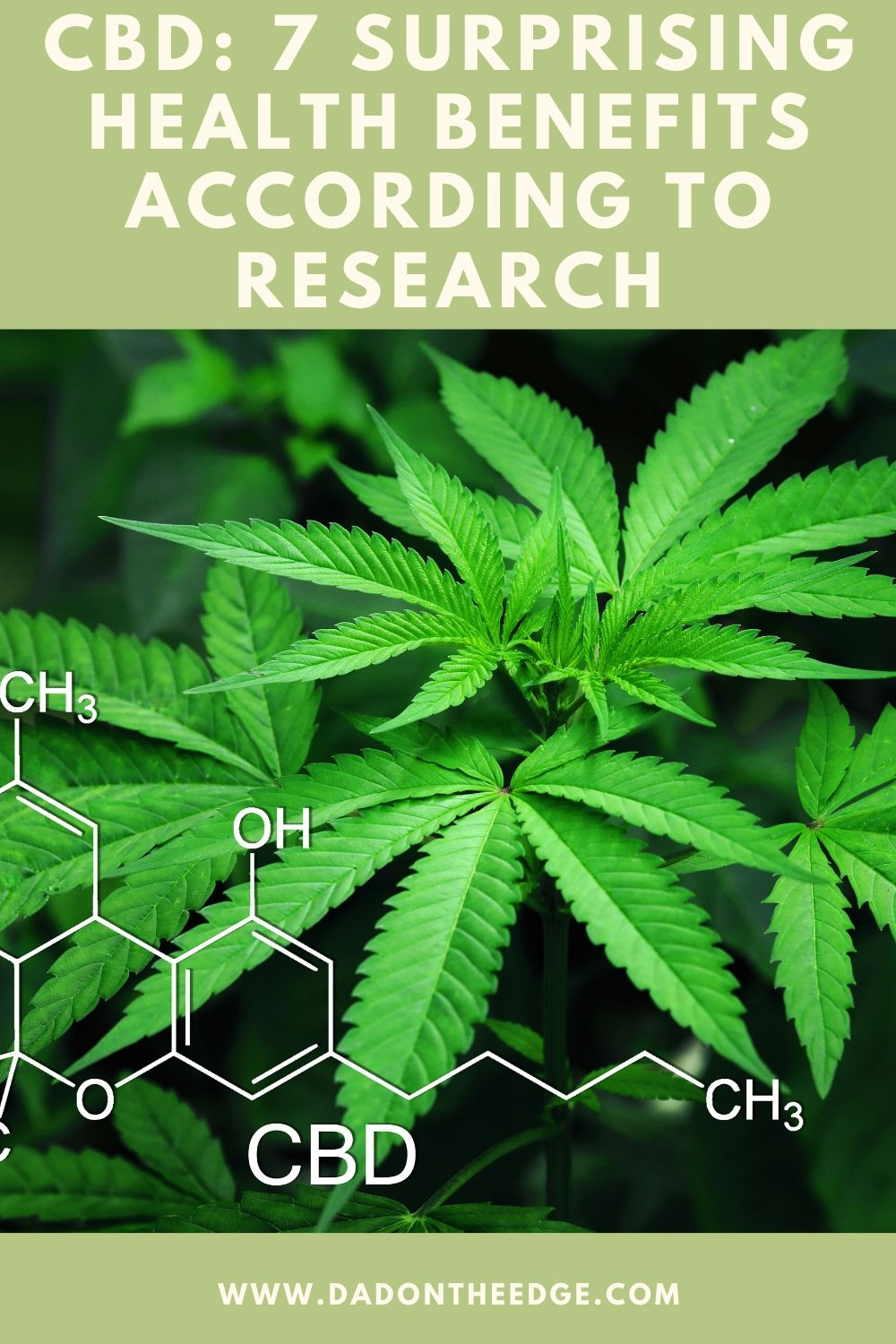 CBD_ 7 Surprising Health Benefits According To Research