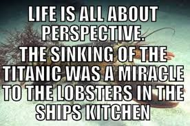 lobsters perspective